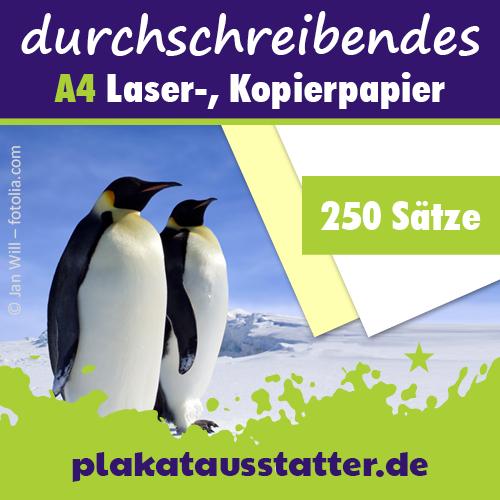 SD-Papier von plakatausstatter.de
